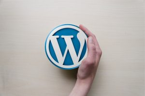 Why wordpress sites are more popular